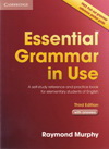 Raymond Murphy: Essential Grammar in Use