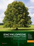 Petr Horáček: Encyklopedie listnatých stromů a keřů