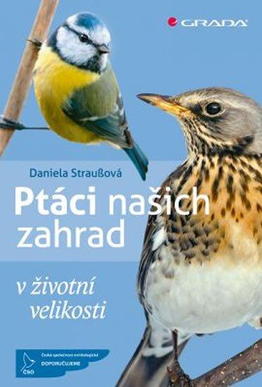 Straußová Daniela: Ptáci našich zahrad v životní velikosti
