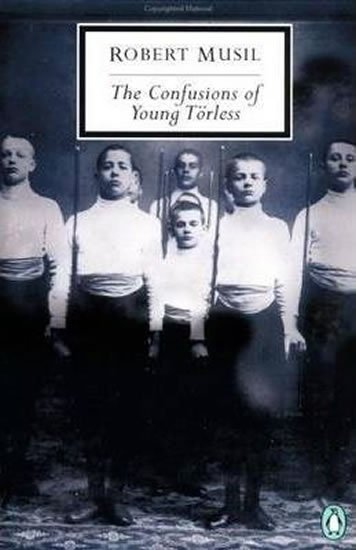 Coetzee John Maxwell: The Confusions of Young Torless