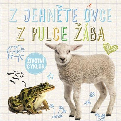 Duhig Holly: Z jehněte ovce, z pulce žába - Životní cyklus