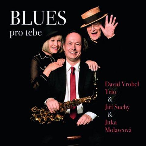 Vrobel David, Suchý Jiří, Molavcová Jitka: BLUES pro tebe - CD