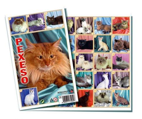 neuveden: Pexeso 32 - Kočky