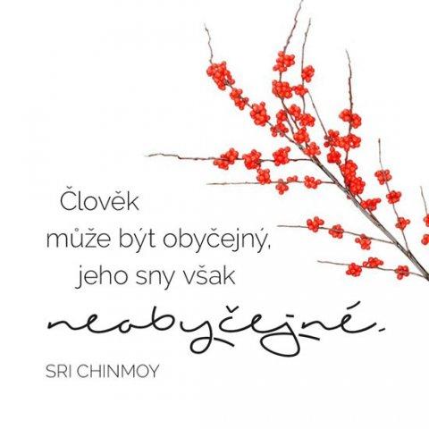 Chinmoy Sri: Korkový podtácek s citátem - Člověk může být obyčejný, jeho sny však  neoby
