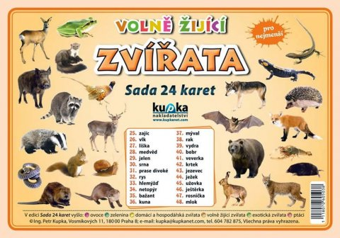Kupka Petr a kolektiv: Volně žijící zvířata  - Sada 24 karet