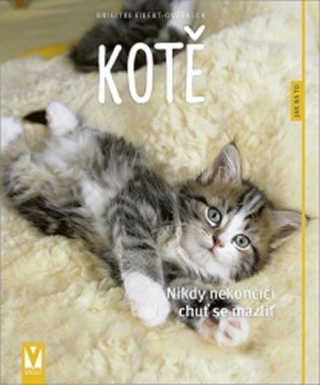 Eilert-Overbeck Brigitte: Kotě - Jak na to?