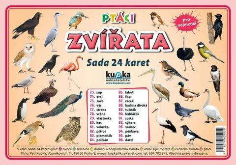 Kupka Petr a kolektiv: Ptáci zvířata - Sada 24 karet