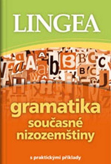 neuveden: Gramatika současné nizozemštiny s praktickými příklady
