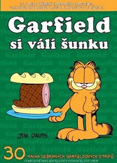 Davis Jim: Garfield si válí šunku (č.30)