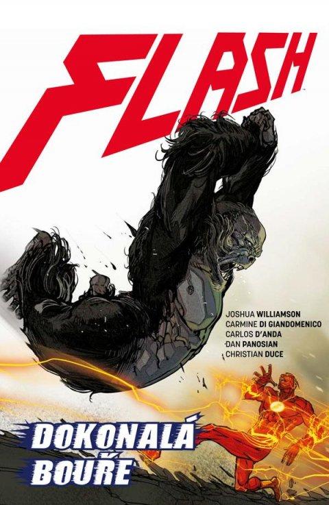 Williamson Joshua: Flash 7 - Dokonalá bouře