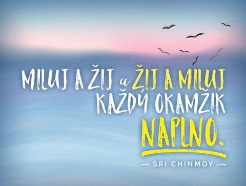 Chinmoy Sri: Plechová cedulka - Miluj a žij a žij a miluj každý okamžik naplno