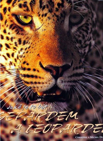 Denis-Huot CHristine,Michel: Jaké je to být Gepardem a Leopardem