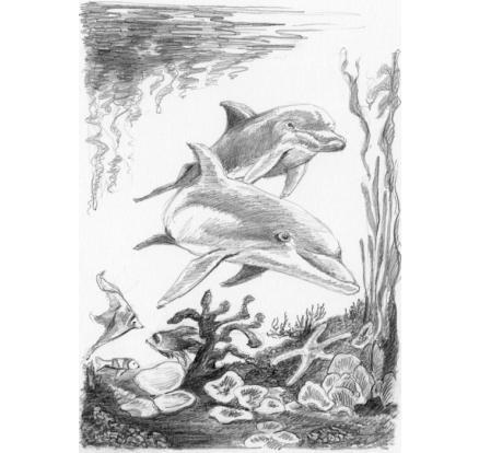 neuveden: Royal Langnickel Malování skicovacími tužkami 12,5 x 17,5 cm/mix 3 motivů