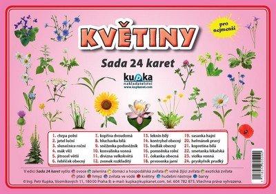 Kupka Petr a kolektiv: Květiny - Sada 24 karet
