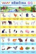 Kupka Petr a kolektiv: Obrázková němčina 1 -  Zvířata