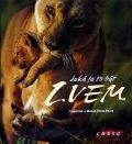 kolektiv: Jaké je to být lvem