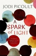 Picoultová Jodi: A Spark of Light : from the author everyone should be reading