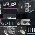 Gott Karel: Zpívá Karel Gott - LP