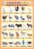 Kupka Petr a kolektiv: Poznávej zvířata - Hospodářská a domácí zvířata