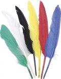 neuveden: Dekorativní peří Indianske 6 ks / 25 - 30 cm