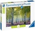 neuveden: Ravensburger Puzzle - Březový les 1000 dílků
