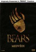 neuveden: Medvědi - DVD