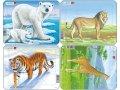 neuveden: Puzzle MINI - Divá zvěř/7 dílků (4 druhy)