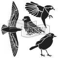neuveden: TCW šablona 15,24 x 15,24 cm - Bird gathering, mini