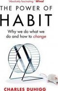 Duhigg Charles: The Power of Habit : Why We Do What We Do, and How to Change