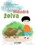 Gecková Iva: Co věděla moudrá želva