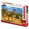 neuveden: Dvě žirafy - Puzzle 1000 dílků