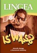 kolektiv autorů: IS' WAS? Slovník slangu a hovorové němčiny
