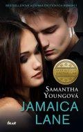 Youngová Samantha: Jamaica Lane