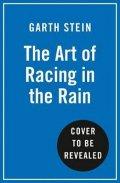Stein Garth: The Art of Racing in the Rain
