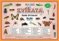 Kupka Petr a kolektiv: Zvířata hmyz - Sada 24 karet