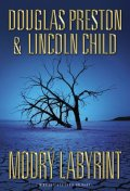 Preston Douglas, Child Lincoln: Modrý labyrint