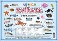 Kupka Petr a kolektiv: Zvířata ve vodě - Sada 24 karet