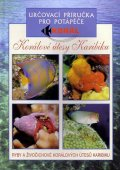 neuveden: Korálové útesy v karibiku - Určovací příručka pro potapěče - Ryby a živočic