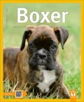Kraupa-Tuskany Herta F.: Boxer - Jak na to