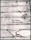 Petr Fabian: Dům mezi okny